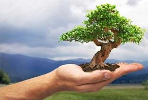 mano-con-albero